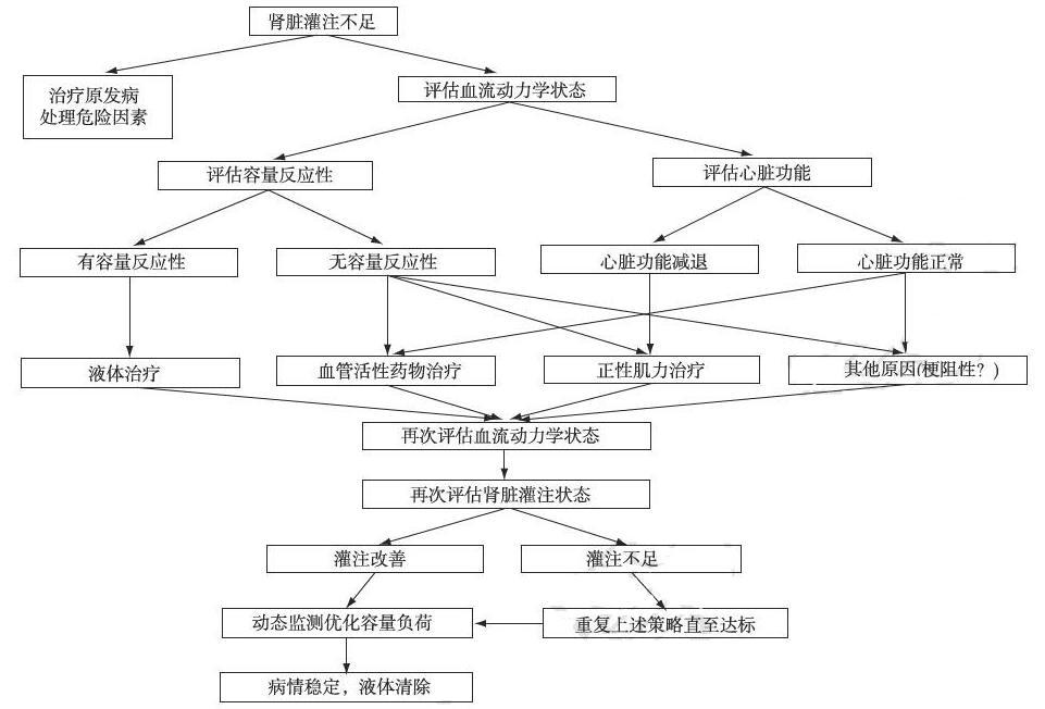 急性肾损伤患者液体管理流程图